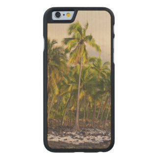 Palm trees, National Historic Park Pu'uhonua o 2 Carved Maple iPhone 6 Case