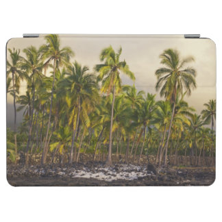 Palm trees, National Historic Park Pu'uhonua o 2 iPad Air Cover