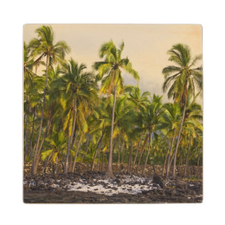 Palm trees, National Historic Park Pu'uhonua o 2 Wood Coaster