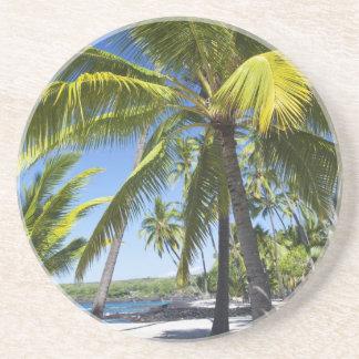 Palm trees, National Historic Park Pu'uhonua o Beverage Coasters