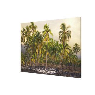 Palm trees, National Historic Park Pu'uhonua o Canvas Print