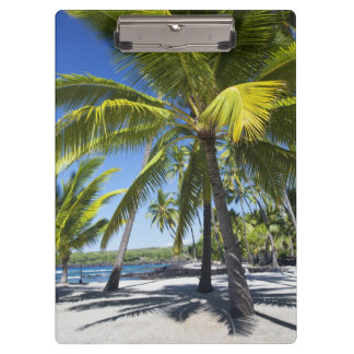 Palm trees, National Historic Park Pu'uhonua o Clipboard