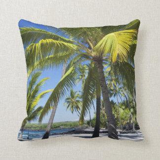 Palm trees, National Historic Park Pu'uhonua o Cushion