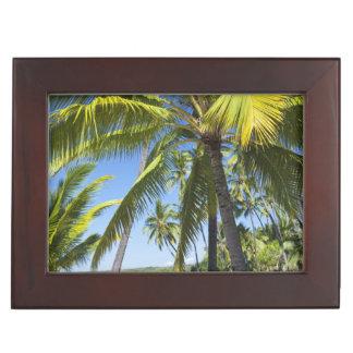 Palm trees, National Historic Park Pu'uhonua o Keepsake Box