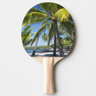 Palm trees, National Historic Park Pu'uhonua o Ping Pong Paddle