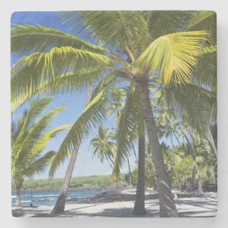 Palm trees, National Historic Park Pu'uhonua o Stone Coaster