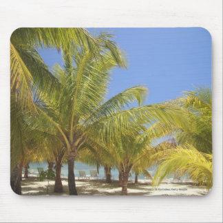 Palm Trees on a Honduras White Sand Beach Mouse Mat