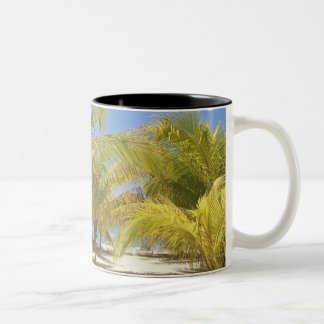 Palm Trees on a Honduras White Sand Beach Two-Tone Coffee Mug