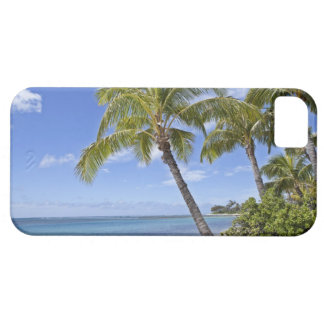 Palm trees on the beach in Hawaii. iPhone 5 Cover
