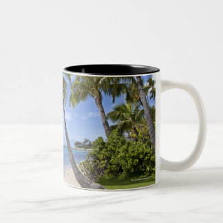 Palm trees on the beach in Hawaii. Two-Tone Coffee Mug