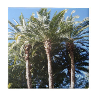 Palm Trees Tile