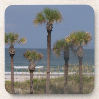 Palm Trees with a Surf Backdrop Drink Coasters