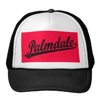 Palmdale script logo in black distressed cap