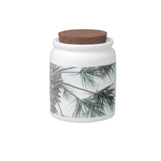 Palmetto Candy Jar