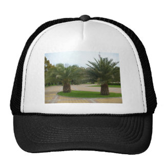Palms Mesh Hats
