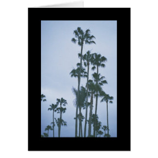 Palms of Summer- Song of Sol. 4:4 Greeting Card