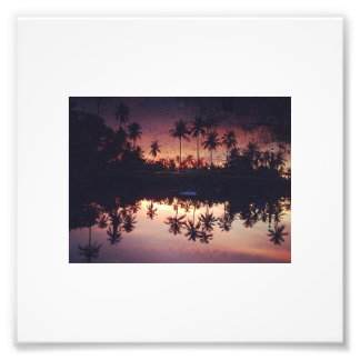 palms photo print