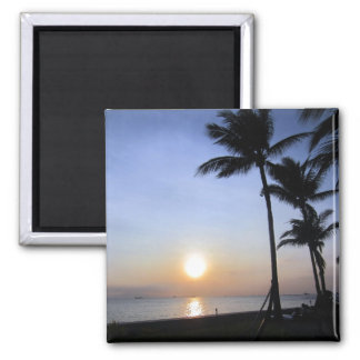 palms sunset magnet