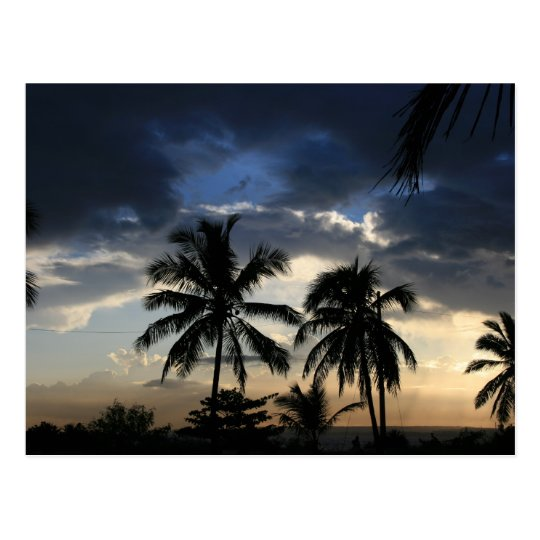Palms sunset postcard