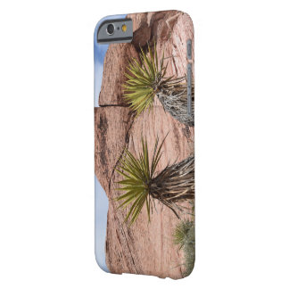 Palms with rocks phone case