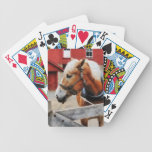 Palomino By Red Barn Card Deck
