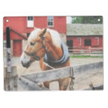 Palomino By Red Barn Dry-Erase Whiteboard