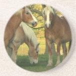 Palomino Draught   Horses Coaster