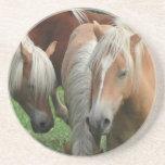 Palomino Herd Coasters