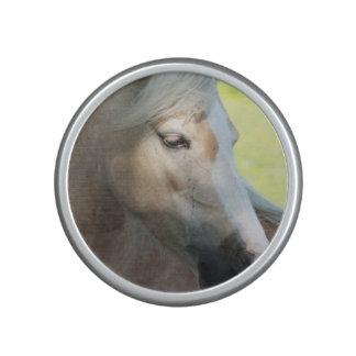 Palomino Horse Speaker
