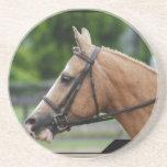 Palomino Horse Coaster