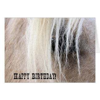 Palomino Horse Eye Birthday Greeting Card