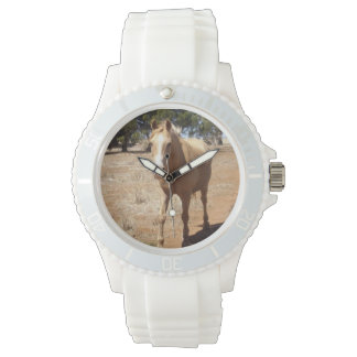 Palomino Horse Greeting, Watch