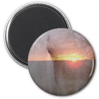 Palomino Horse in Sunrise Magnet