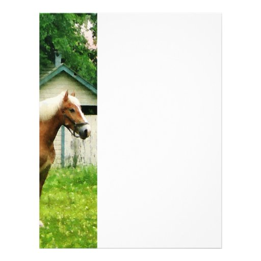 Palomino in Pasture Full Color Flyer