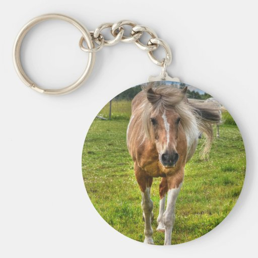 Palomino Paint Horse-lovers Gift Collection Key Chains