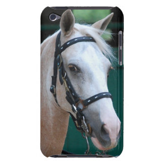 Palomino Paso Fino iTouch case Barely There iPod Covers