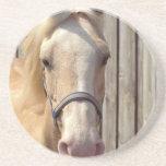 Palomino Pony Coasters