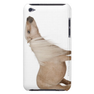 Palomino Shetland pony - Equus caballus (3 years Barely There iPod Cover