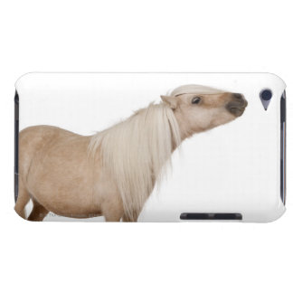 Palomino Shetland pony - Equus caballus (3 years Case-Mate iPod Touch Case
