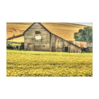 Palouse Area of Eastern Washington, USA Canvas Print