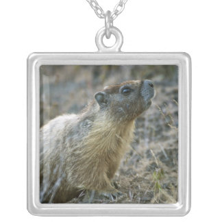 Palouse Falls State Park Silver Plated Necklace