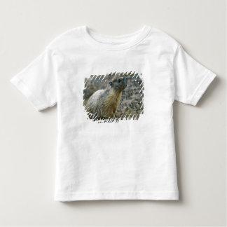 Palouse Falls State Park Toddler T-Shirt
