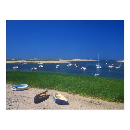 Pamet Harbour Truro Cape Cod Postcard