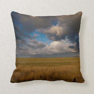 Pampas Cushion