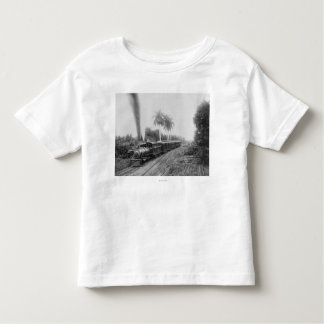 Pan American Central Railroad in Guatemala Toddler T-Shirt