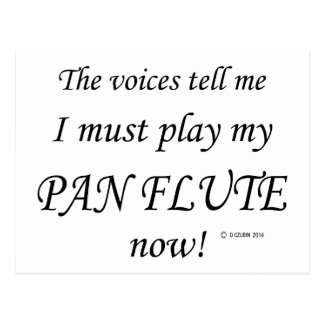 Pan Flute Voices Say Must Play Post Card