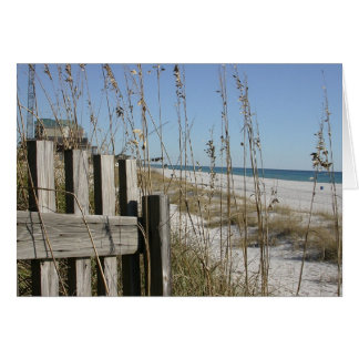Panama City Beach Greeting Card