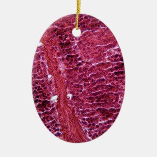 Pancreas Cells under the Microscope Ceramic Oval Decoration