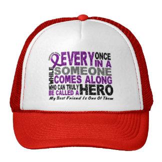 Pancreatic Cancer HERO COMES ALONG 1 Best Friend Mesh Hats