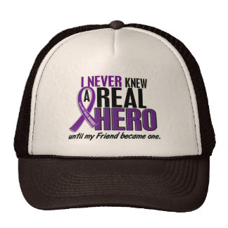 Pancreatic Cancer NEVER KNEW A HERO 2 Friend Mesh Hats